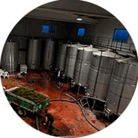 viticultors