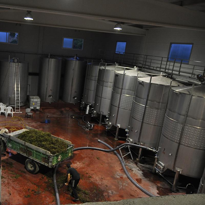 viticultors1