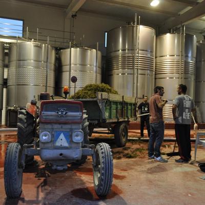 viticultors2
